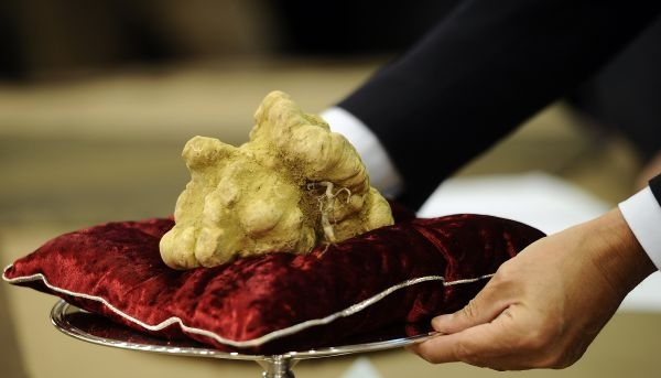 italian-truffle