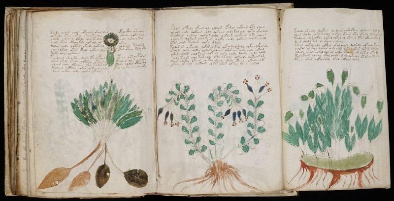 moynich-manuscript